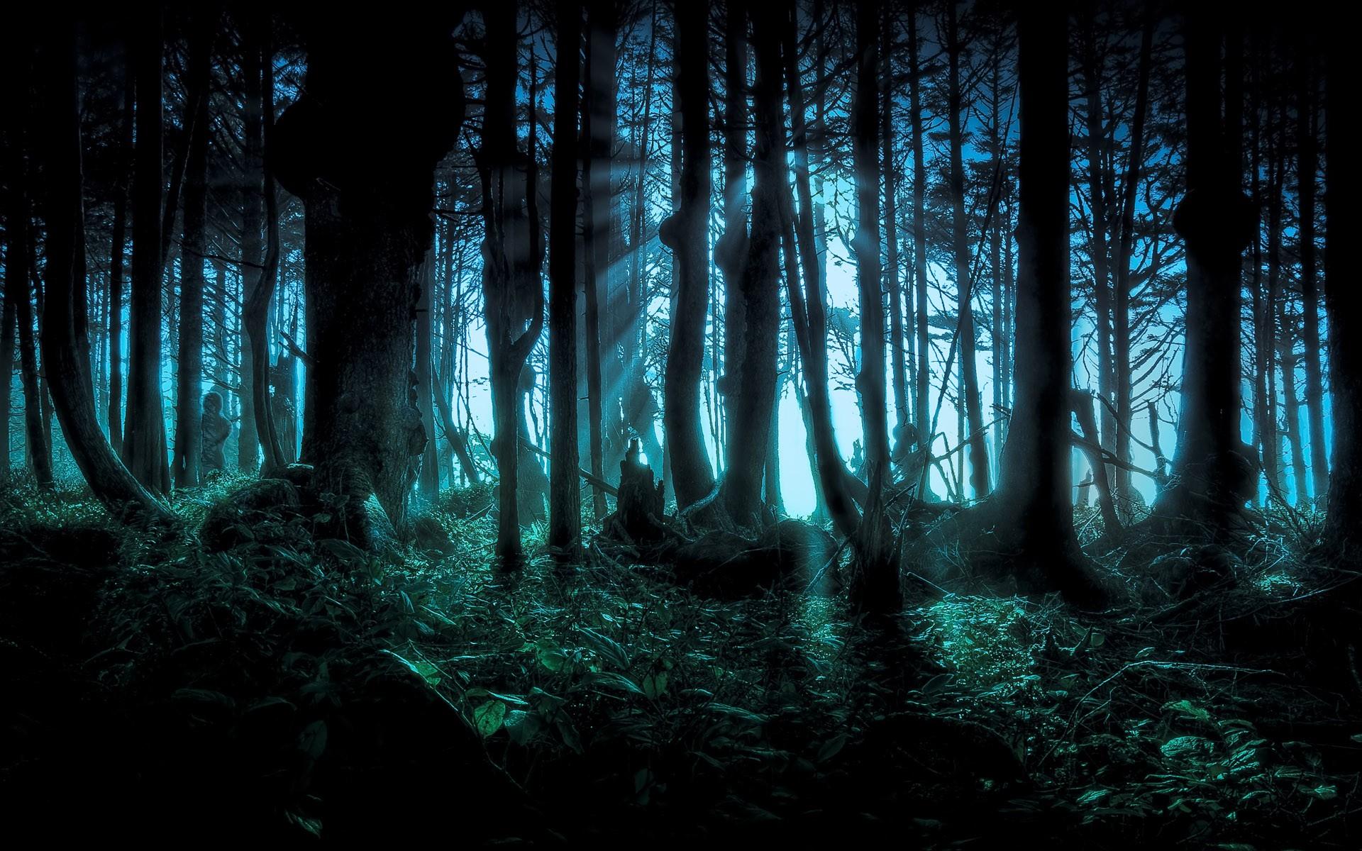 Spookige explorers gezocht voor welpenactiviteit in Zevenaar